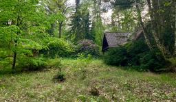 Waldhäusle Terrassenseite