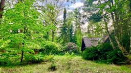 Waldhäusle in der Lüneburger Heide