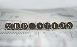 Vorteile Mediation Offenburg