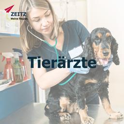 Tierarzt Zeitz
