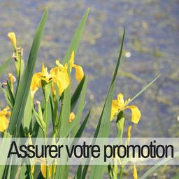 Partenaire promotion office de tourisme lac de trémelin