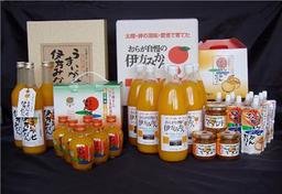 柑橘果汁商品