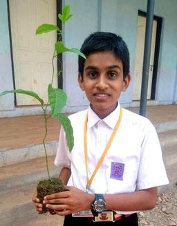 14 歳の誕生日を記念して薬草の苗を植えました
