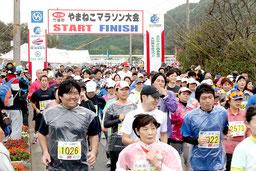 1344人のジョガーが参加した第21回竹富町やまねこマラソン=8日、西表