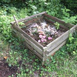 Kompost gegen Lebensmittelverschwendung