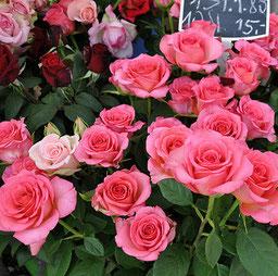 """Rote Rosen gelten als das Symbol der Liebe. Neurosen haben indes eine Beziehung zu sexuellen Wunschregungen aus dem Infantilen. Bild: Marco Verch/flickr. """"Rosen am Wiener Naschmarkt"""""""