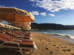 Parasols alignés devant une plage