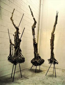 « Trois arbres de ma planète » - Roman Gorski