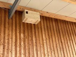 Neuer Schleiereulenkasten in Dachau
