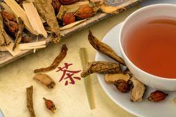 Chinesische Pflanzentherapie
