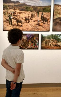 Un joven visitante maravillado ante algunas de las imágenes más coloridas de la muestra. / Por Laura Delgado