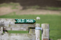 Abbildung: Wegweiser zum Old Man of Hoy / © Klaus Schindl