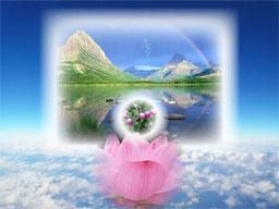 心の平和【自己変容の道】
