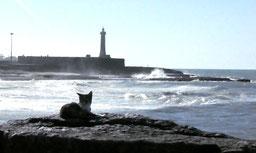 der Leuchtturm von Rabat...