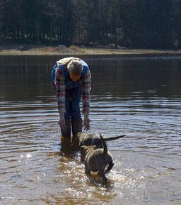 Etang du Merle.. Dyson (staartje hoog) is dol op water.. Leif van Diesel.. ook dol op water)