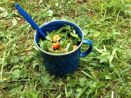 Salat Spitzwegerich Tomaten Paprika gesund Outdoor Natur heimische Pflanzen wandern vegan