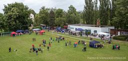 Das 1. Chemnitzer Mopsrennen 2013