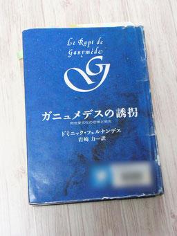 ペーパーでちらりとご紹介した『ガニュメデスの誘拐 同性愛文化の悲惨と栄光』。(図書館本なので館名ボカシで失礼します)時間がとれたらきちんとご紹介したいです。