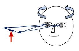 図:HITの概略