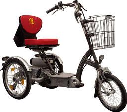EasyGo Scooterdreirad Van Raam