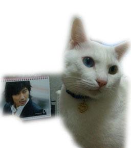 美猫や〜☆