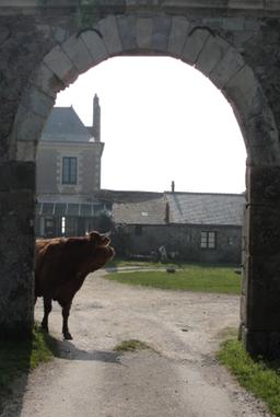 Porche en pierre, marquant l'entrée de la Ferme de Mareil