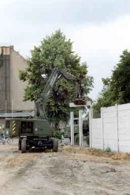 30 Jahre Mauerfall- Mauerabriss Neukölln/Treptow