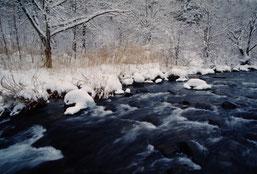 雪景色は一の瀬高橋付近
