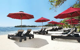 Strand des The Laguna  A Luxury Collection Resort & Spa