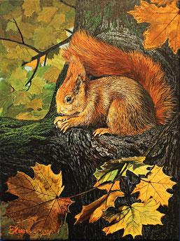 Eichhörnchen 30 x 40