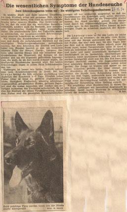 PZ 27.November 1954