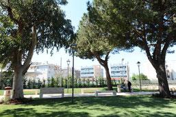 Giardini Arbostella