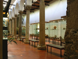 Il Museo Archeologico Provinciale