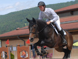 Stall Weber Messen - Sportpferd Ermanita vom Heudorf