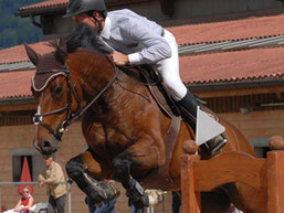 Stall Weber Messen - Sportpferd Tichikita du Tyl