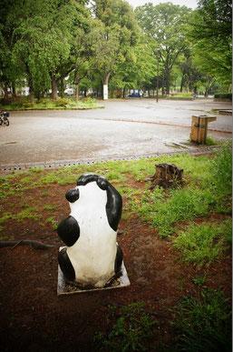 また、会いにくるね、PANDAさん