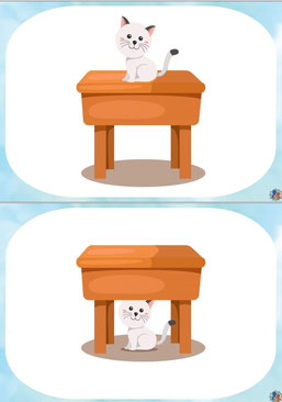Prielinksniai. Kur katė?