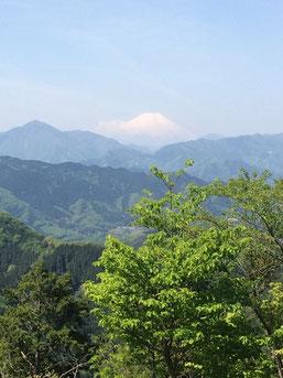 高尾山頂上から富士山