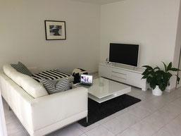 Hausratversicherungen vergleichen mit Paschke & Partner, Wohnung mit Fernseher, Tisch, Bild, Sideboard, Couch, Teppich