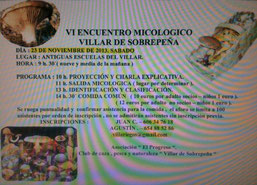 VI encuentro 2013