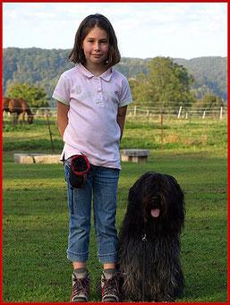 Der Schapendoes mit seiner jungen Hundeführerin