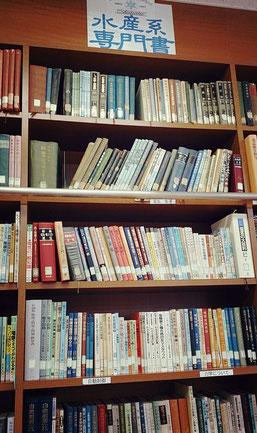 隠岐水産高校 図書室 書架