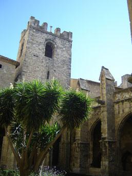 cathédrale St Just et St Pasteur