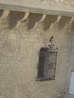 et comme nous n'avons pas les ailes de ce pigeon irrespectueux,
