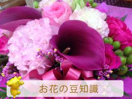 お花のまめ知識【花屋まるよし】