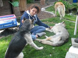 Andrea mit Skeena und Zeus