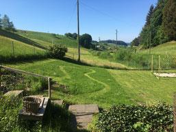 Gehegeaufbau Heimeli, Sommer 2018