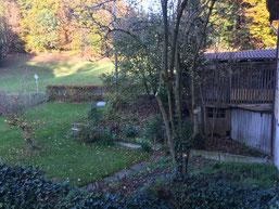 Ein Bächlein gurgelt durch das Weidli, mit einem lustigen Brüggli, und viel Gebüsch hat es zum Verstecken spielen.