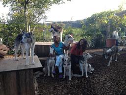 Aus dem Arbeitsleben unserer Doghändler