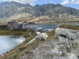 On Tour zum Gotthard-Pass